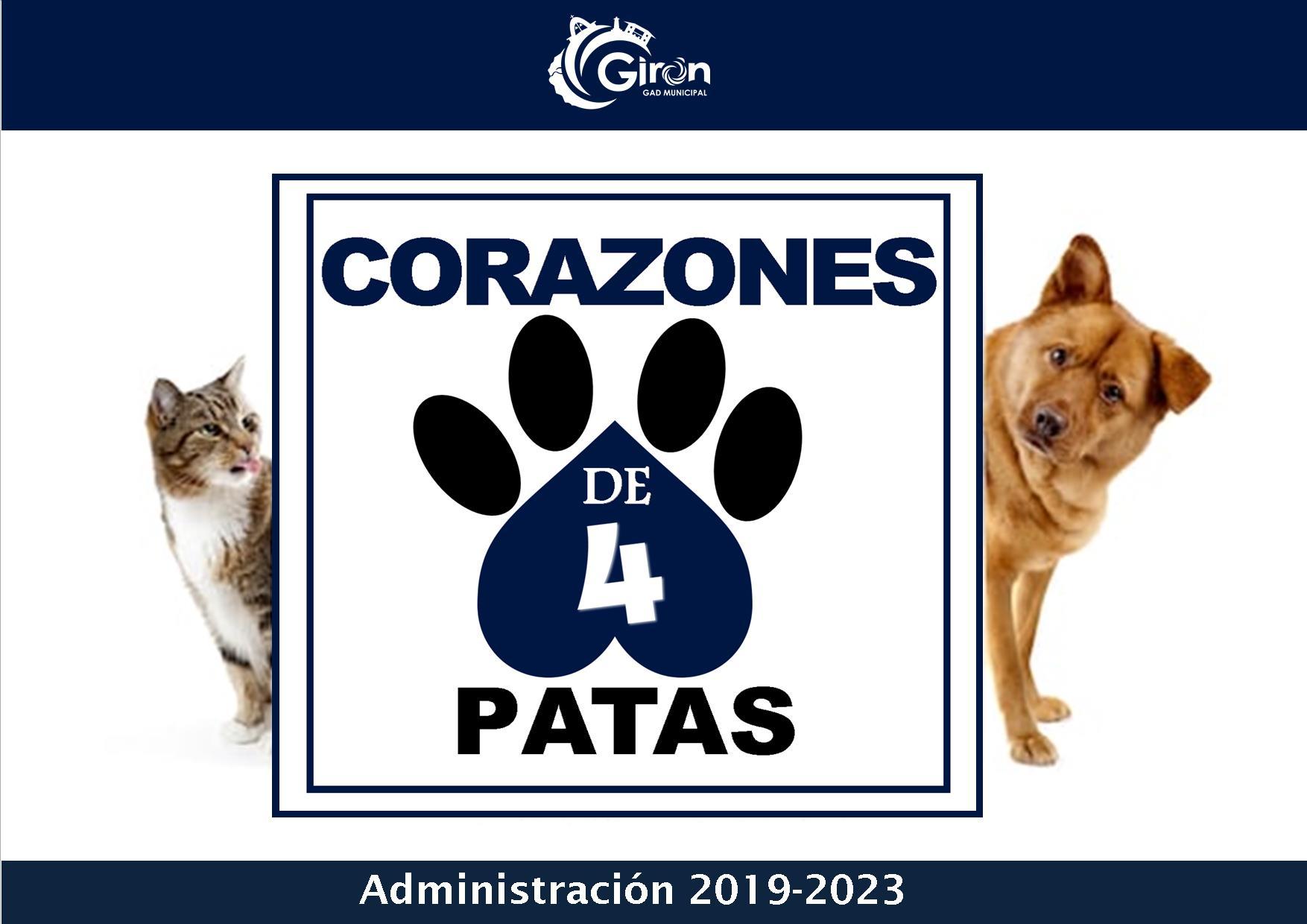 PROYECTO » CORAZONES DE 4 PATAS»